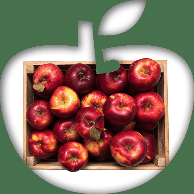 Ikona skrzynki jabłek